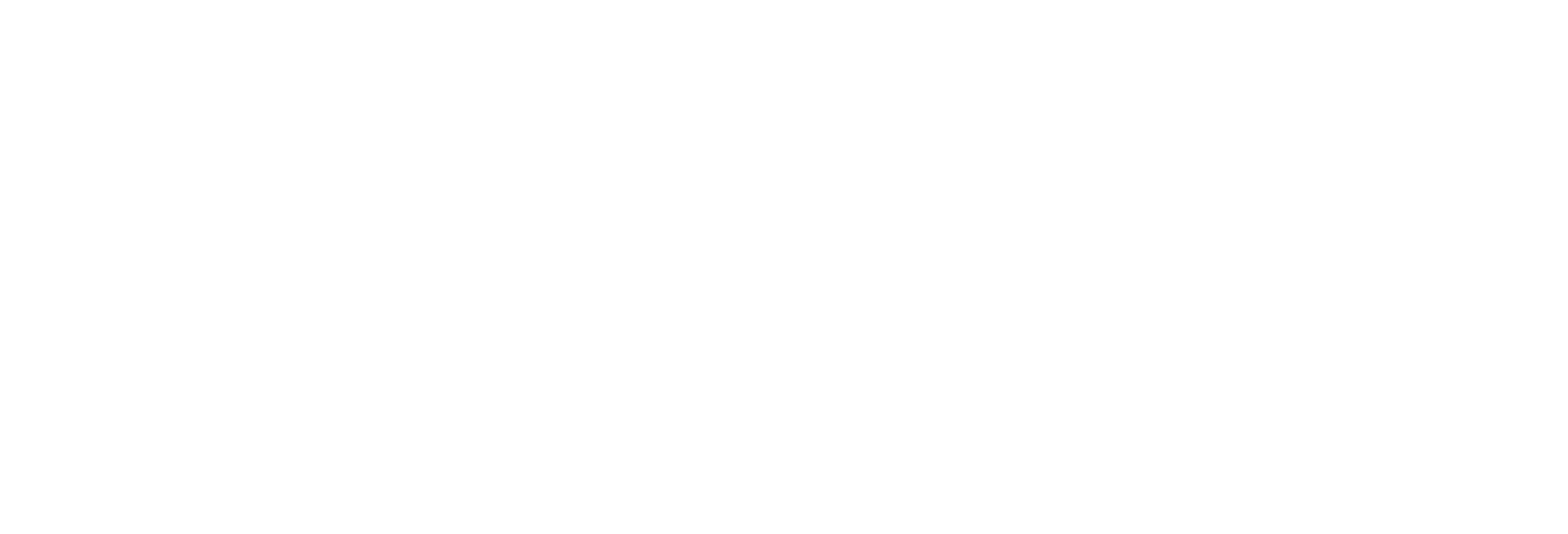 Zeppelin We Create Solutions